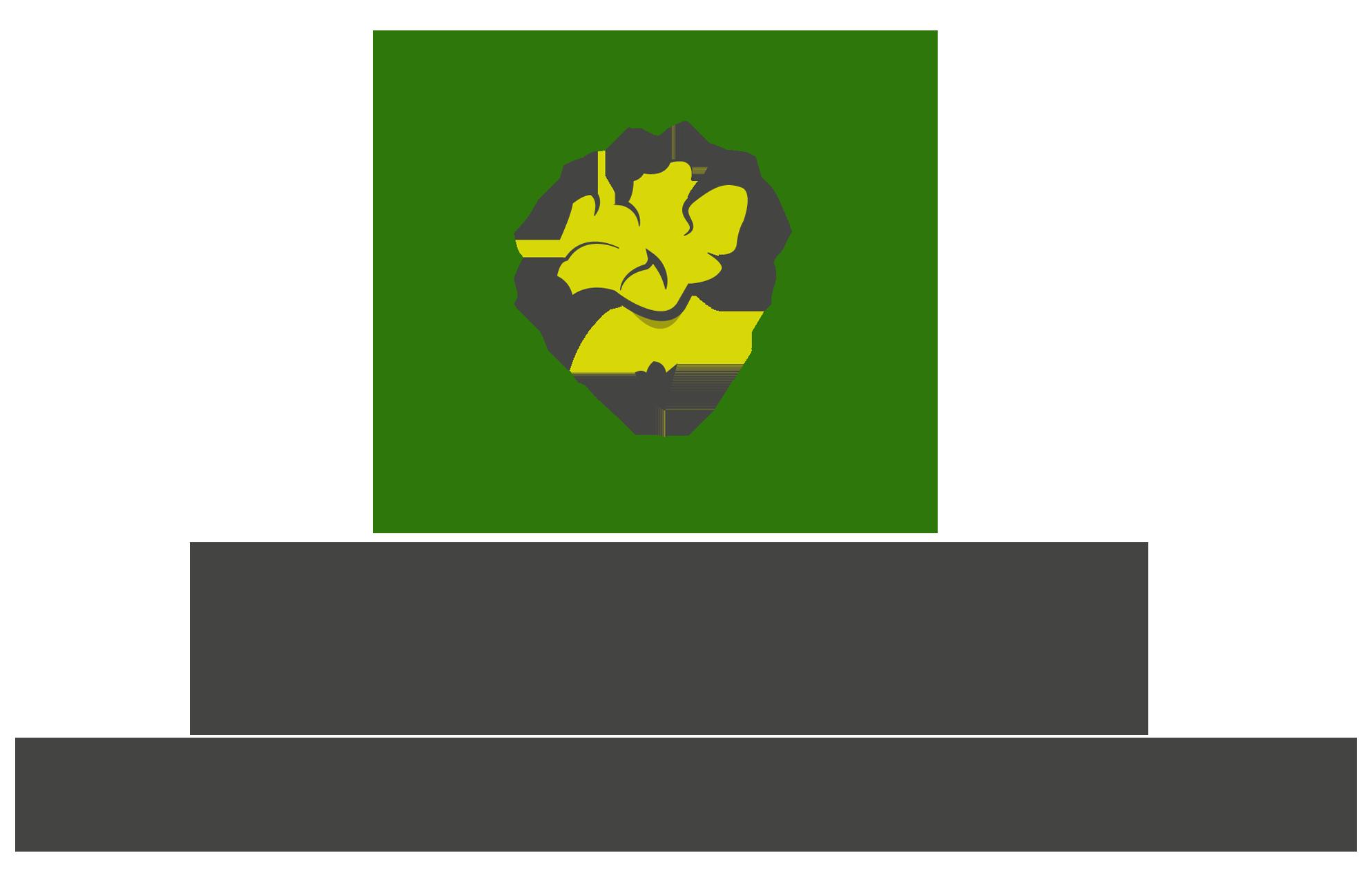 Academia Brasiliense de Letras